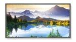 Профессиональная панель NEC MultiSync E905