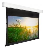 Экран с электроприводом Premier Phoenix-R (16:9) 243х243 (E 234x132/9 (MW)-PR/W)