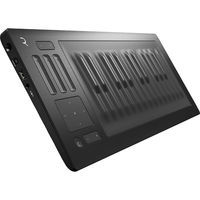 Купить со скидкой Midi клавиатура Roli Seaboard Rise 25