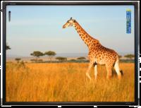 Интерактивная доска 78 ActivBoard Touch 6 касаний, ПО ActivInspireИнтерактивные доски<br>Преимущества 78 ActivBoard Touch 6&amp;nbsp;поверхность, сохраняющая работоспособность при частичном повреждении, оптимизирована для работы с проектором&amp;nbsp;использование инфракрасной технологии позволяет распознавать касания пальцами.<br><br>Гарантия: 1 год<br>Вес: 16.5 кг<br>Разрешение: 4096 x 4096<br>Питание: USB 2.0<br>Технология: Инфракрасная и ультразвуковая<br>Формат: 4:3<br>Диагональ (дюймы): 78<br>Размер рабочей поверхности: 158 x 119 см<br>Маркеры-ручки: 2